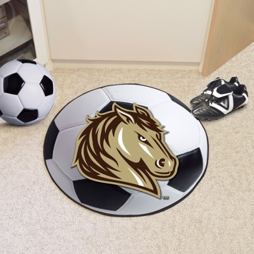 Picture of Southwest Minnesota State Soccer Ball