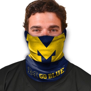 Picture of Michigan Game Face
