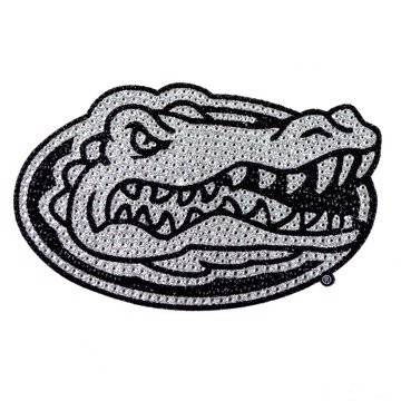 Picture of Florida Bling Decal