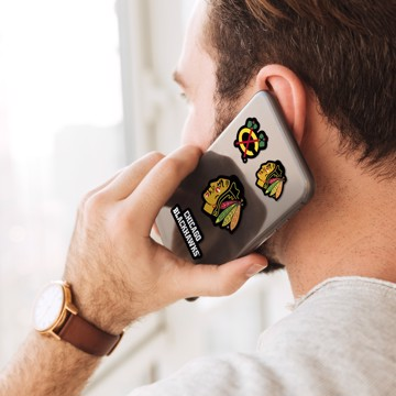 Picture of Chicago Blackhawks Mini Decal 12-pk