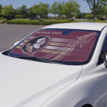 Picture of Florida State Auto Shade